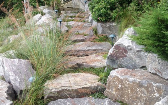 Flat Stone Stairs With Vegetation
